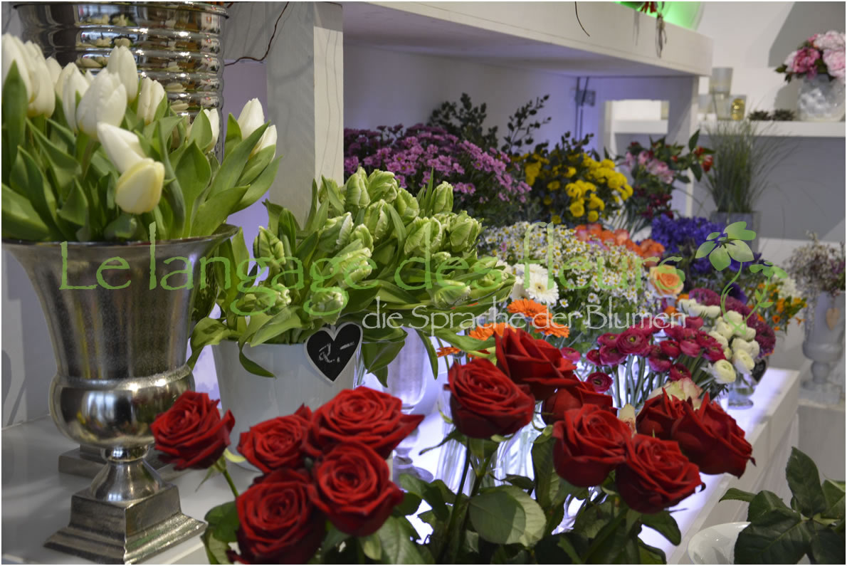 Flower Shop Munich, Flowers view